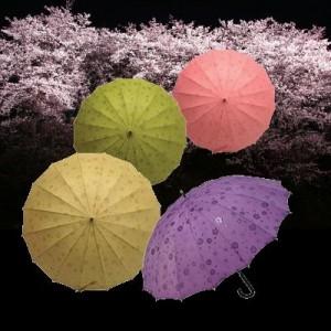 花舞妓 傘