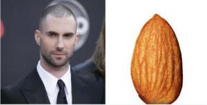 adam almond